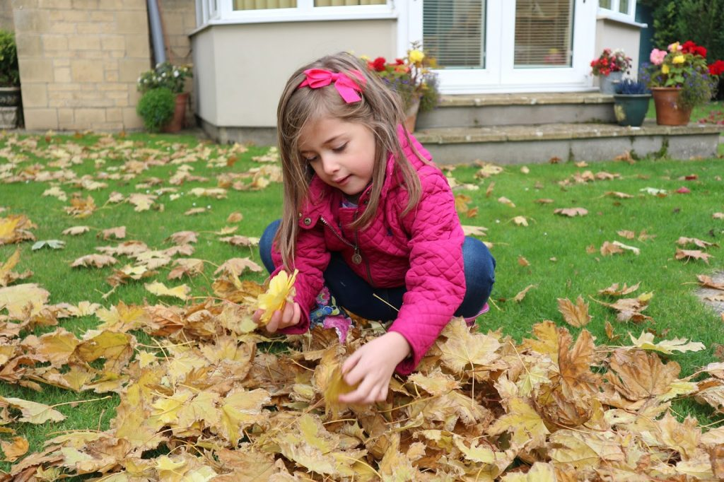 Playing in the Leaves #chasingnature
