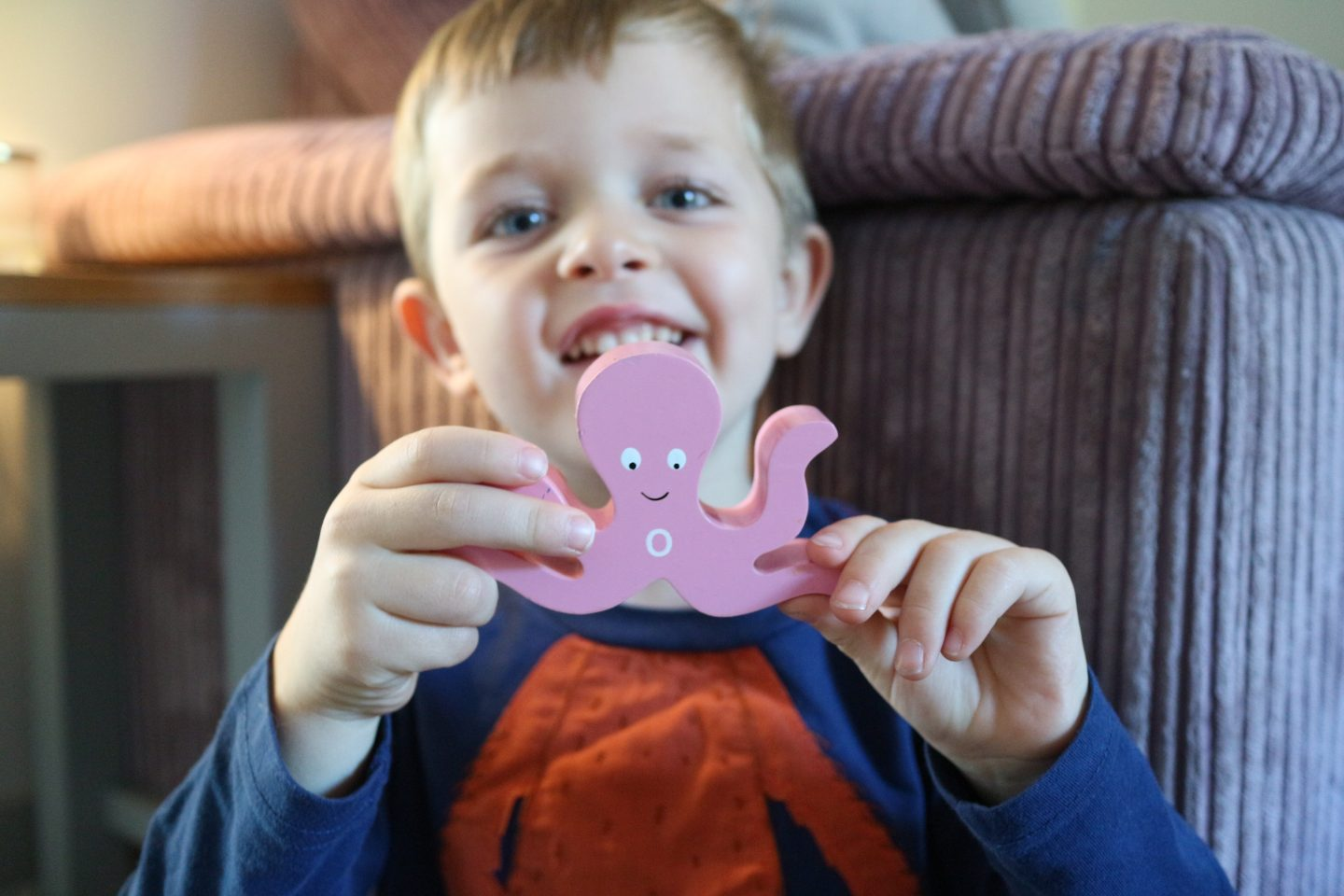 SRI Educational Wooden Toys Review