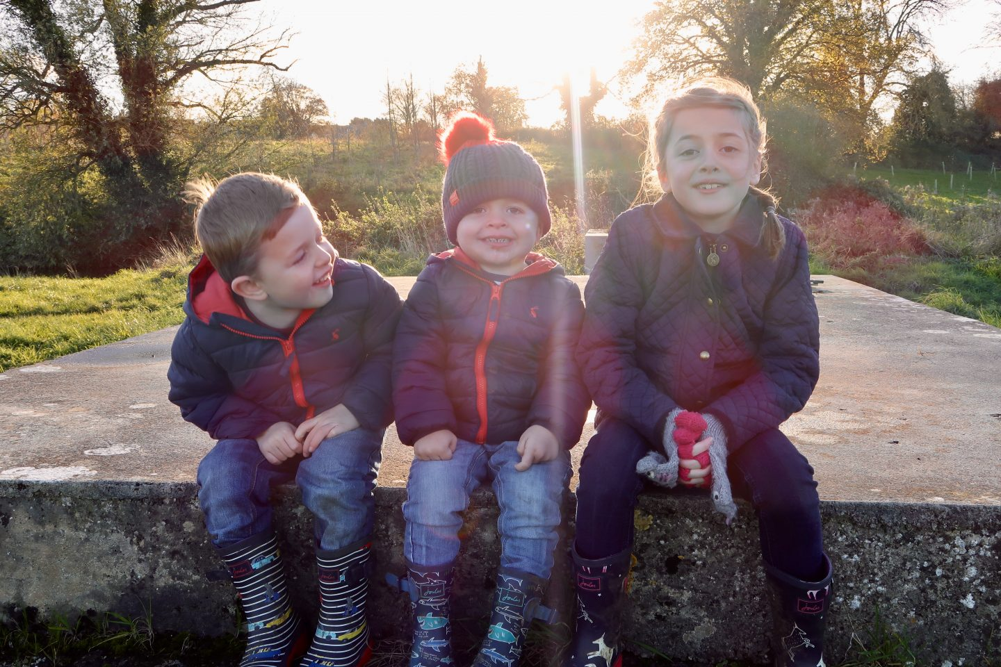 The Siblings Project – November 2017