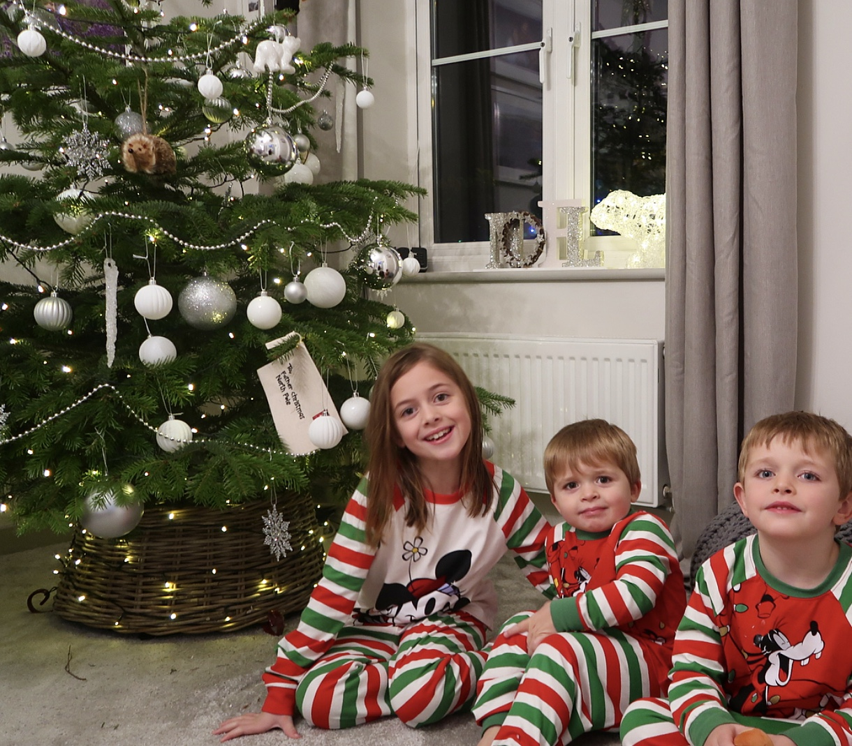 The Siblings Project – December 2017